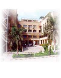 British International School, Cairo