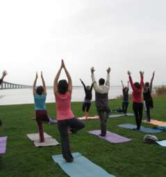 Yogafool - Free Outdoors Yoga Classes